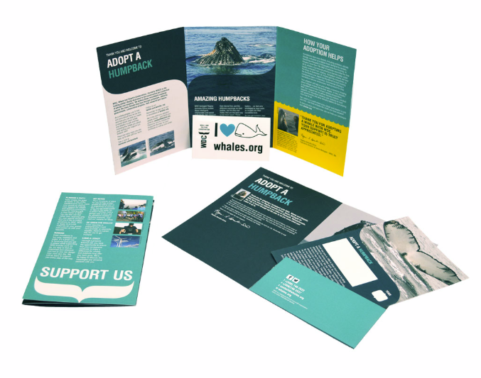 "Image of Whale adoption package, showing navy and teal trifold, adoption certificate, folder with humpback whale images and am ""I heart whales"" window cling"