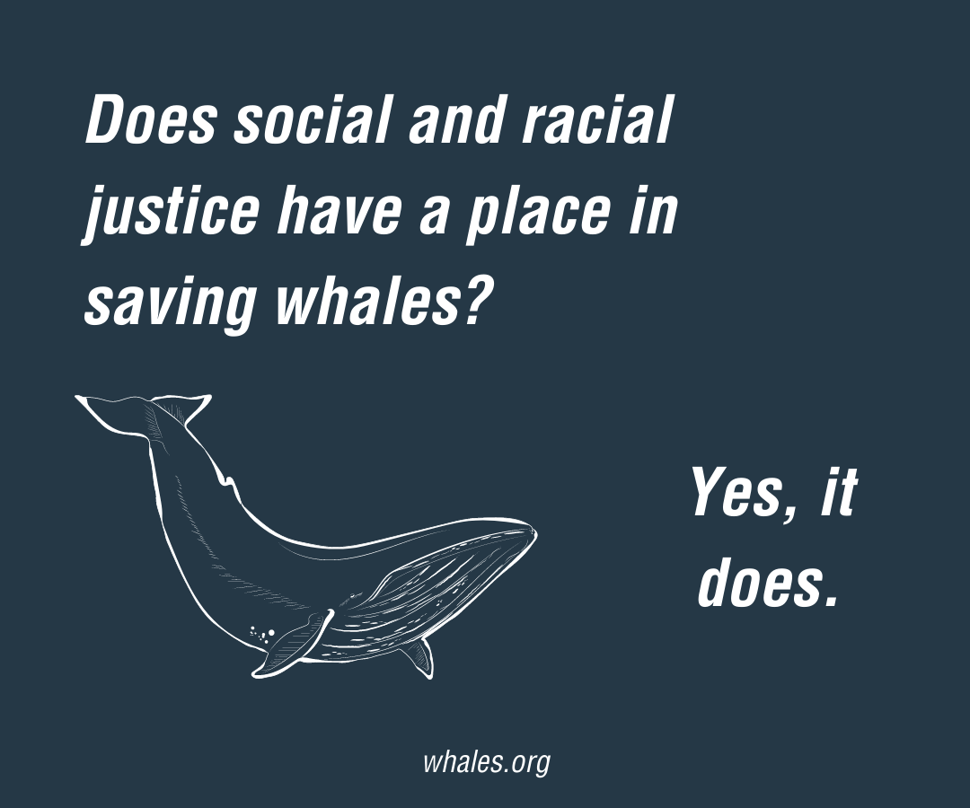 """Text says """"Does social and racial justice have a place in saving whales? Then below that is a simple drawing of a humpback whale and to the right of the whale, white text says """"Yes, it does."""" In small text, whales.org is at the bottom."""