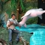 River dolphin exhibition in museum